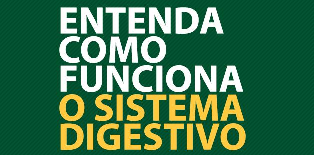 Como funciona o sistema digestivo - Instituto Digestivo