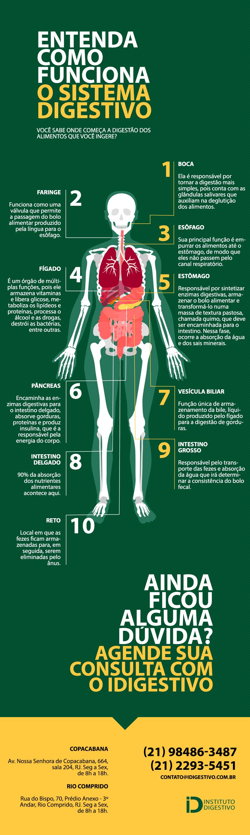 Como-funciona-sistema-digestivo-infografico-clinica-idigestivo