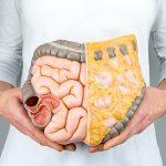 Como evitar a má digestão - Instituto Digestivo